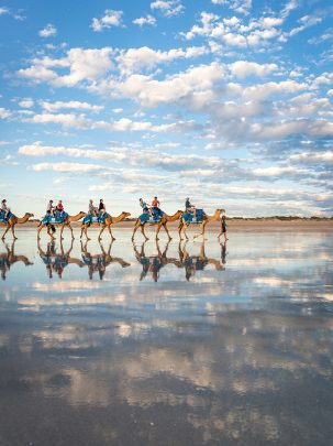 Cable Beach Camels, Broome, Western Australia