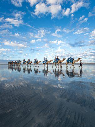 Broome Camel Safaris, Cable Beach, Broome, Western Australia